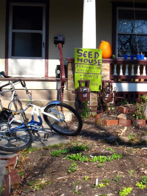 blog seed house